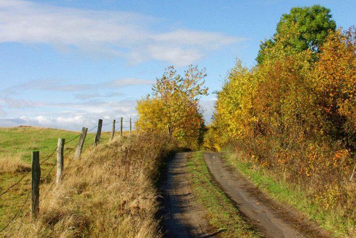 droga na zachód
