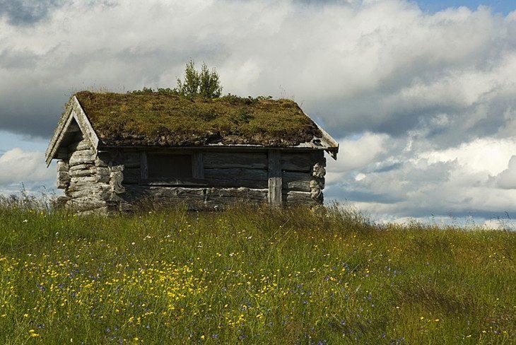 pod skandynawskim niebem