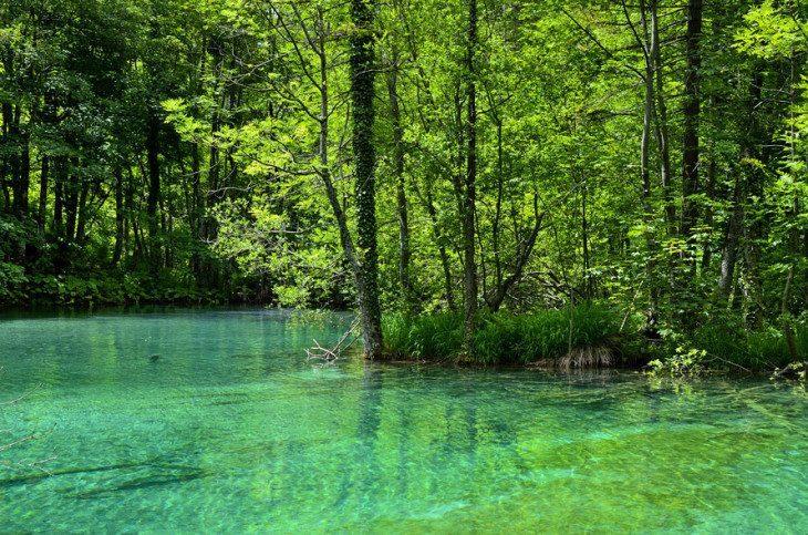 ...barwy natury...