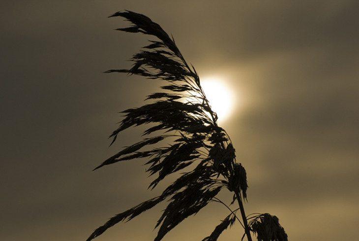 ...pod słońce...